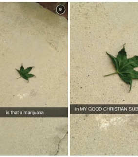 christian, funny and leaf