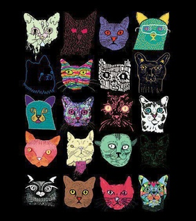 cats, crazy and farben
