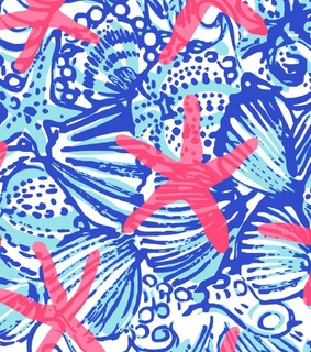 blue, lilly and lilly pulitzer