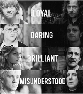 draco malfoy, hermionie granger and ron weasly