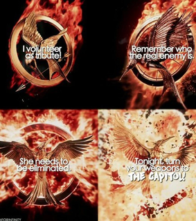game of thrones, got and hunger games