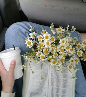 book, coffee and flowers