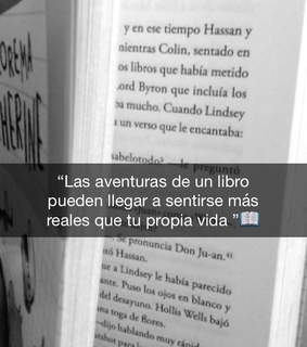 beautiful disaster, books and hush hush