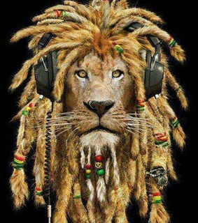forever, lion and music