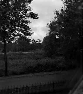 autumn, bad weather and black & white