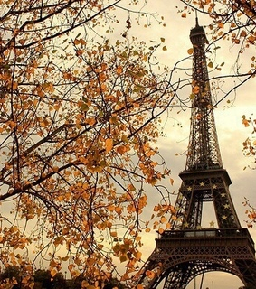 funn, herbst and love