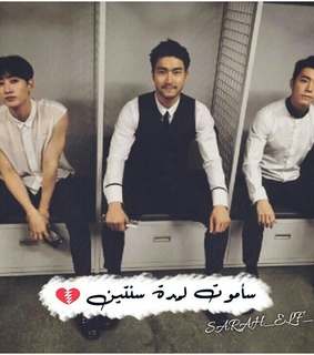 arab, donghae and elf