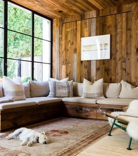 cozy, dog and living room