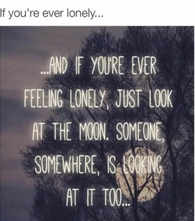 lonely, moon and you are not alone