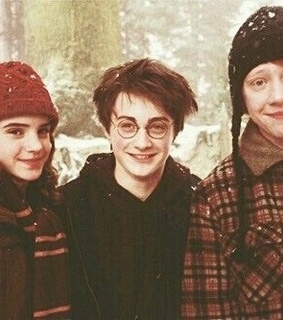 harry, hermione and ronald