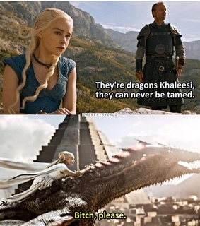 bitch please, daenerys targaryen and dragon