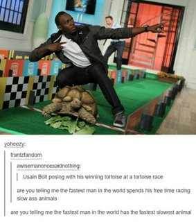 fast, slow and tortoise