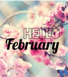 blossom, flowers and hello february