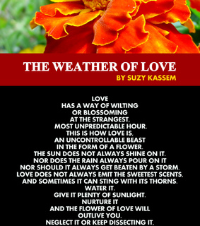 love, love poem and weather