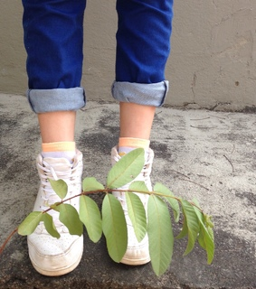 plants are friends, plants and jeans