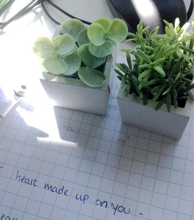 plants are friends, plants and paper