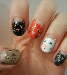 funny images, amazing cat nails and funny pictures