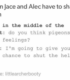mortal instruments, alec lightwood and jace herondale