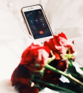 calls from love, apple product and spring break