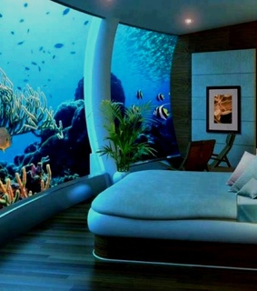 bed room, my wish and with fish
