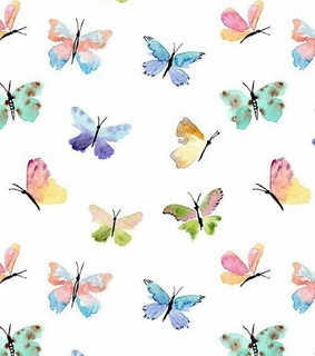 butterfly, fly and mariposa