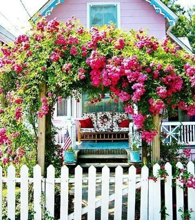 house, picket fence and pink house