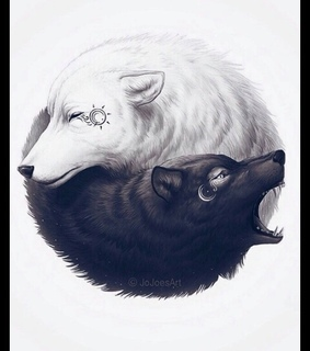 black and white, wolf and yin yang