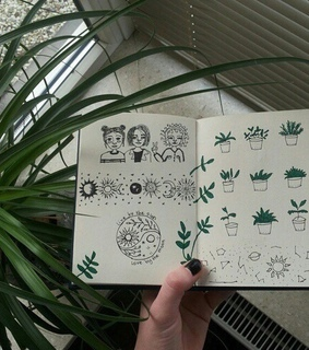 nature, plants and tumblr