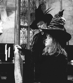 harry potter, hermione granger and minerva mcgonagall