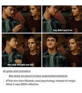 harry potter and hermoine