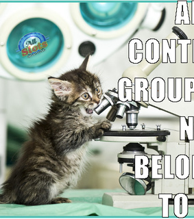 funny cat, science and cat meme