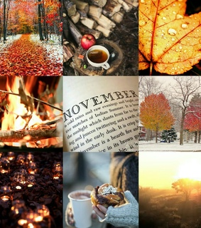 fall, hello november and new month