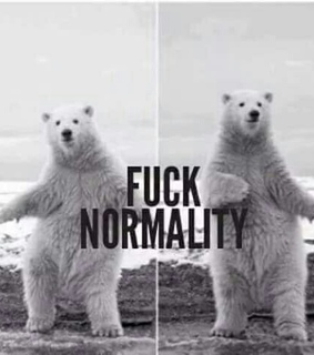 bear and normality