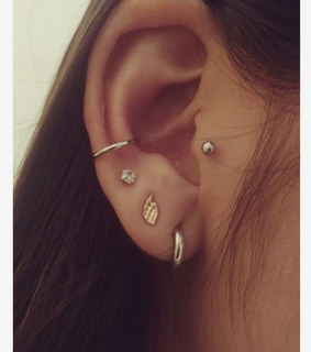conch, ear and lobe