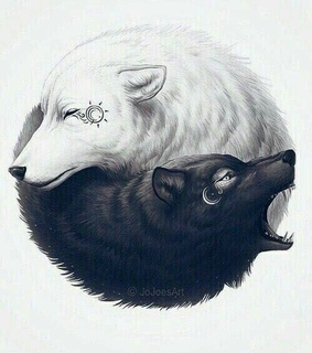 black, white and wolves
