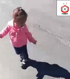 funny images, funny jokes and funny video