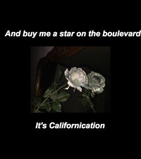 red hot chili peppers, song and california