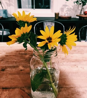cafe, flowers and summer