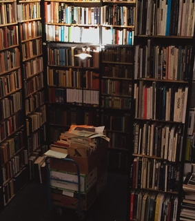 bookshelves, vintage and reading
