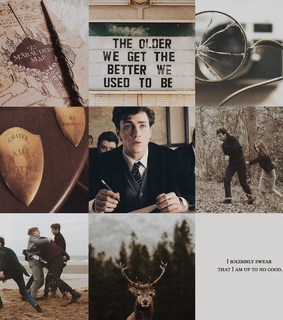 james potter, prongs and harry potter