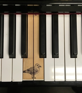 drawing, piano and instrumento