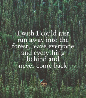escape, quotes and forest