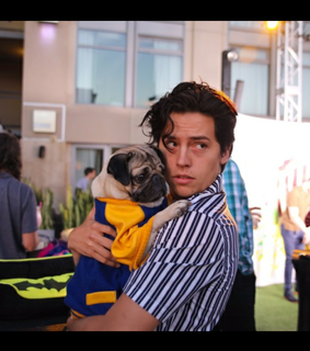twins sprouse, fratelli sprouse and riverdale