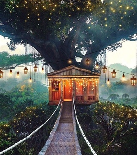 tree house, indie and beautiful
