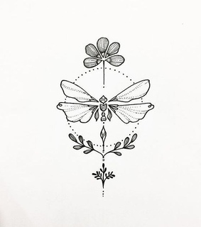 flower, dragonfly and draw