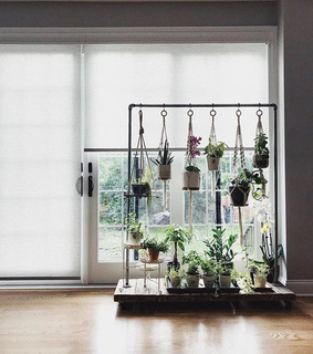knotted plant hanger, indoor nature and hanging decoration