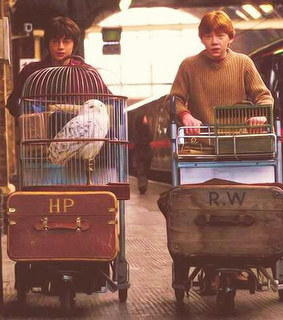 harry potter, fred and george weasley and ron weasley
