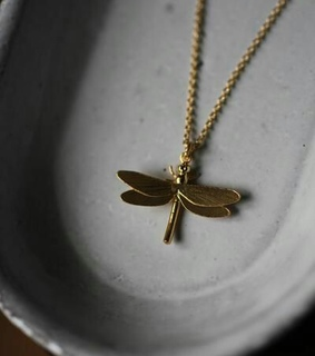 jewerly, dragonfly and nackelace
