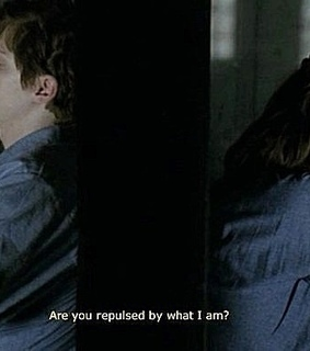 i am anne frank, american horror story and evan peters