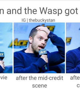 memes, marvel and ant man